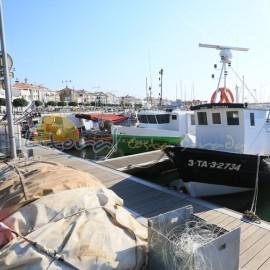 Bateaux du port