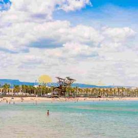 Vue de La Pineda et sa plage depuis la mer
