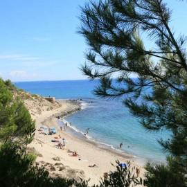 Playa nudista del Torn