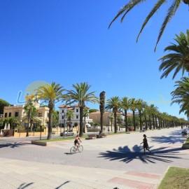 Promenade à La Pineda