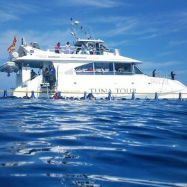 Tuna Tour à Ametlla de Mar